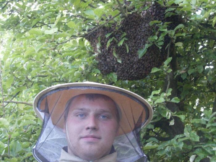 Rój pszczół był na prawdę spory....
